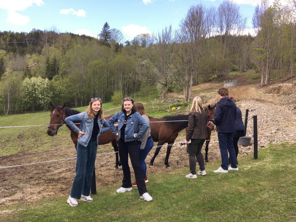 Heltbergelever på gården ved hestehagen. Foto.