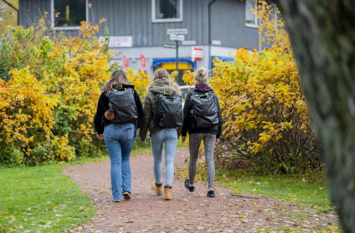 Illustrasjonsbilde for innlegget Åpen dag på Heltberg Private Gymnas Drammen